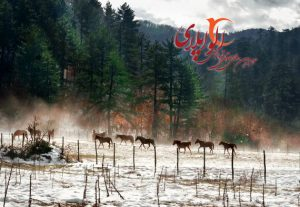 پارک های ملی ترکیه | مکان های توریستی ترکیه