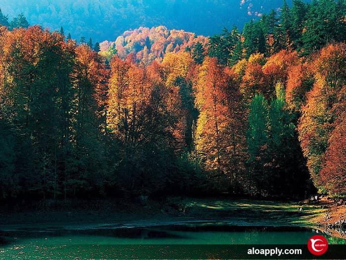 برجسته ترین و پربیننده ترین پارک های ملی در ترکیه