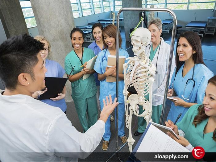 برنامه درسی دکتری در ترکیه چگونه است؟