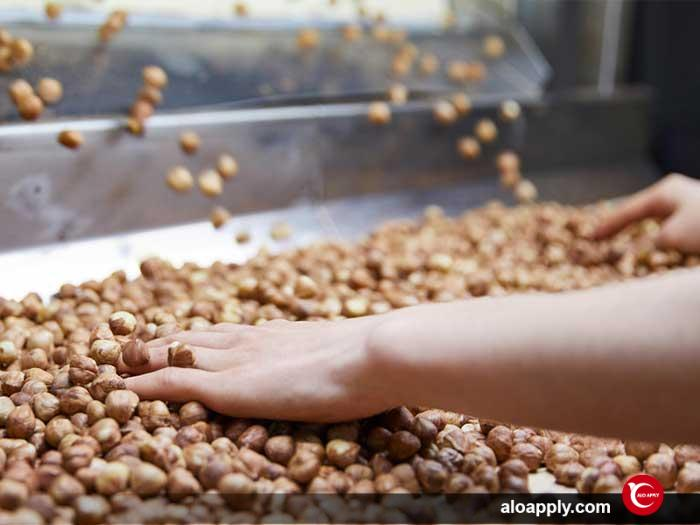 صادرات محصولات کشاورزی ترکیه