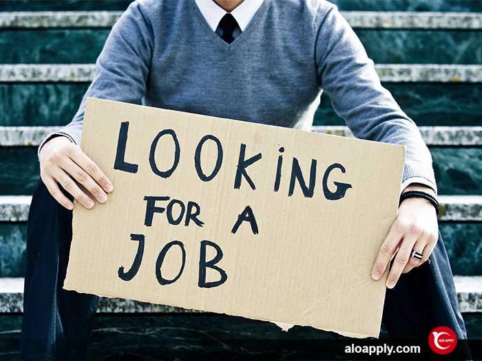 پیدا کردن شغل در ترکیه