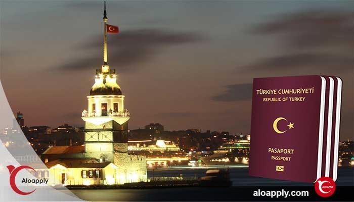 ویزای الکترونیک ترکیه