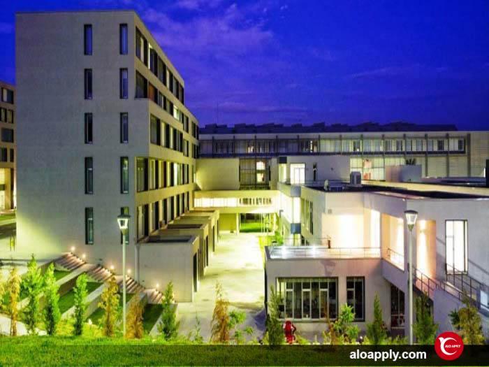 انستیتوهای دانشگاه چانکایا