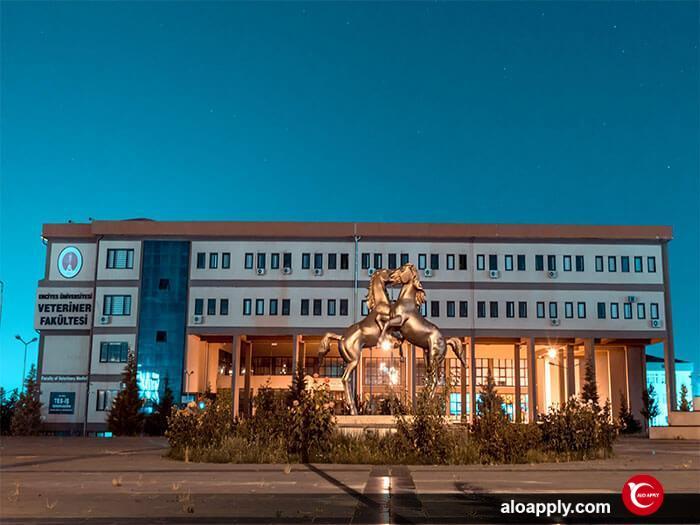 رسالت دانشگاه ارجیس ترکیه