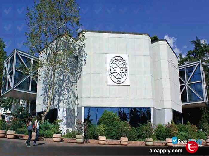 دانشگاه فنی ییلدیز استانبول (Yıldız Teknik Üniversitesi)