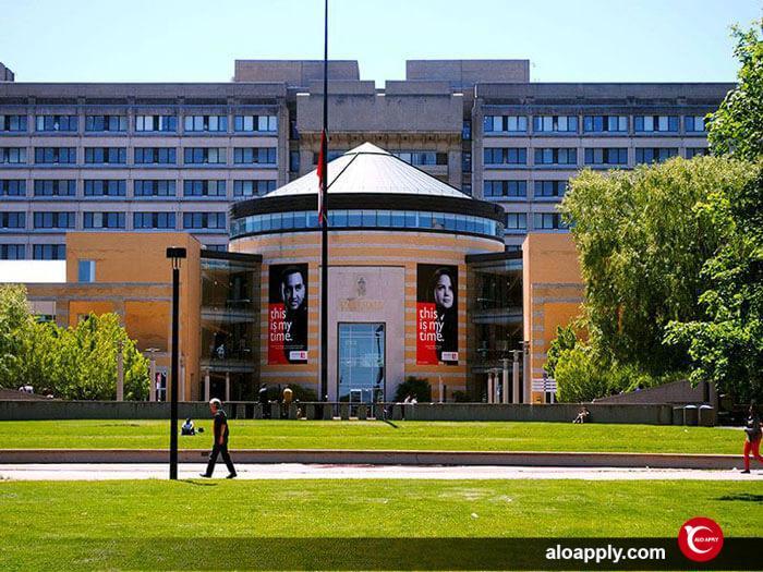 بورسیه تحصیلی در دانشگاه یورک کانادا