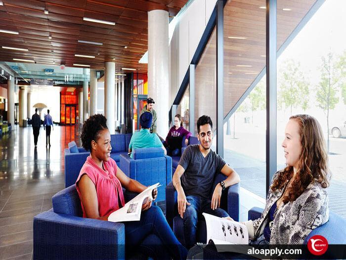 شبکه های ارتباطی دانشجویان دانشگاه جورج براون