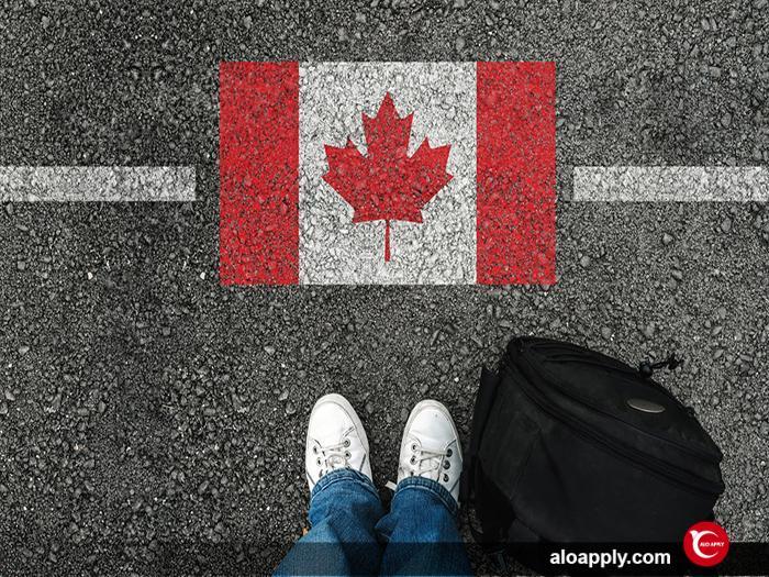 مهاجرت به کانادا از طریق جاب آفر (job offer)