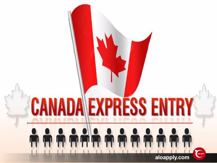 مراحل مهاجرت از طریق اکسپرس انتری به کانادا