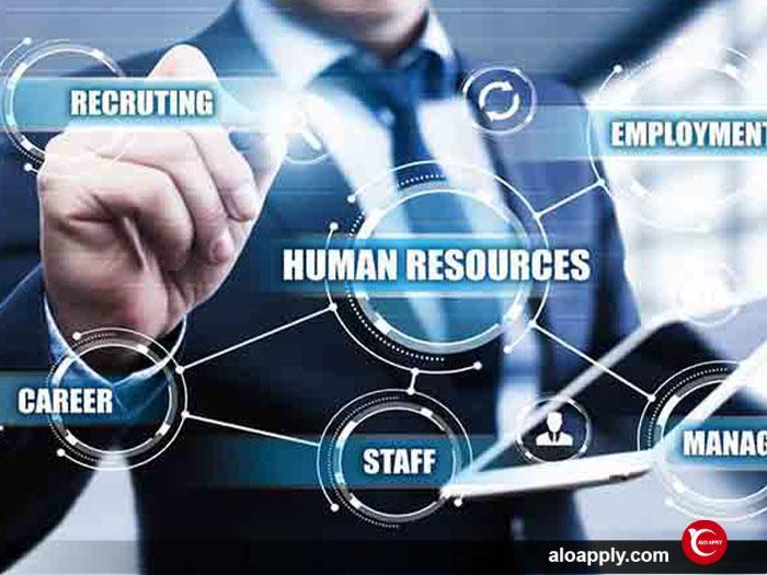 همه چیز در رابطه با رشته منابع انسانی