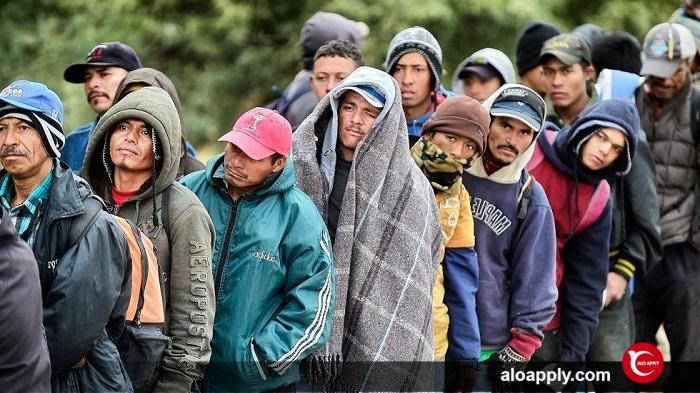 مهاجرت چیست؟
